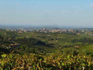wijnlandschap piemonte