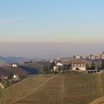 Barolo wijngebied met de Alpen op de achtergrond