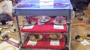 Eerste truffelbeurs
