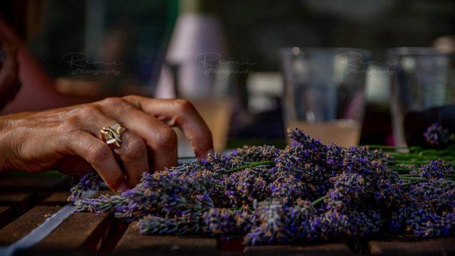 Lavendelworkshop