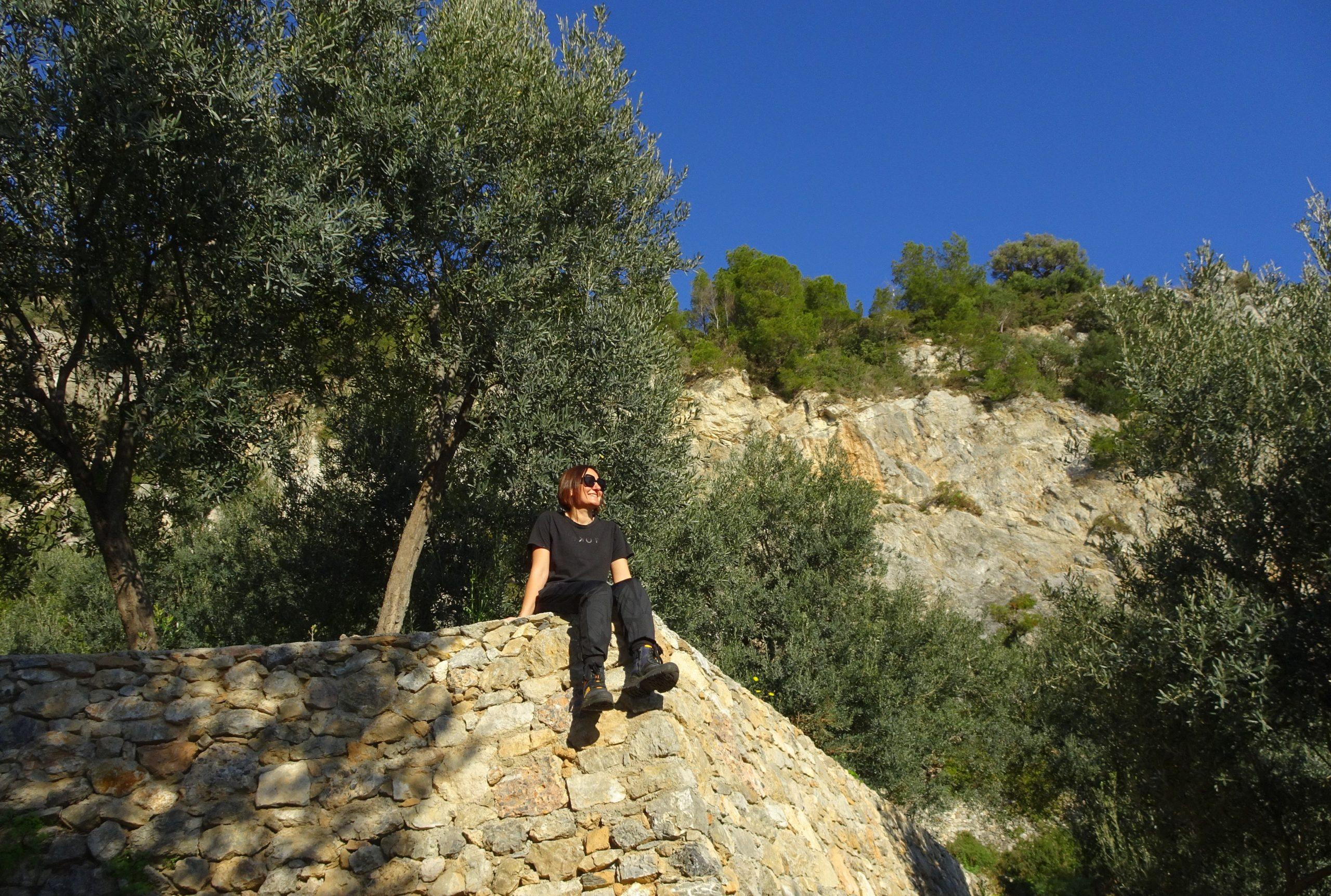 wandelpad olijfgaarden liguria