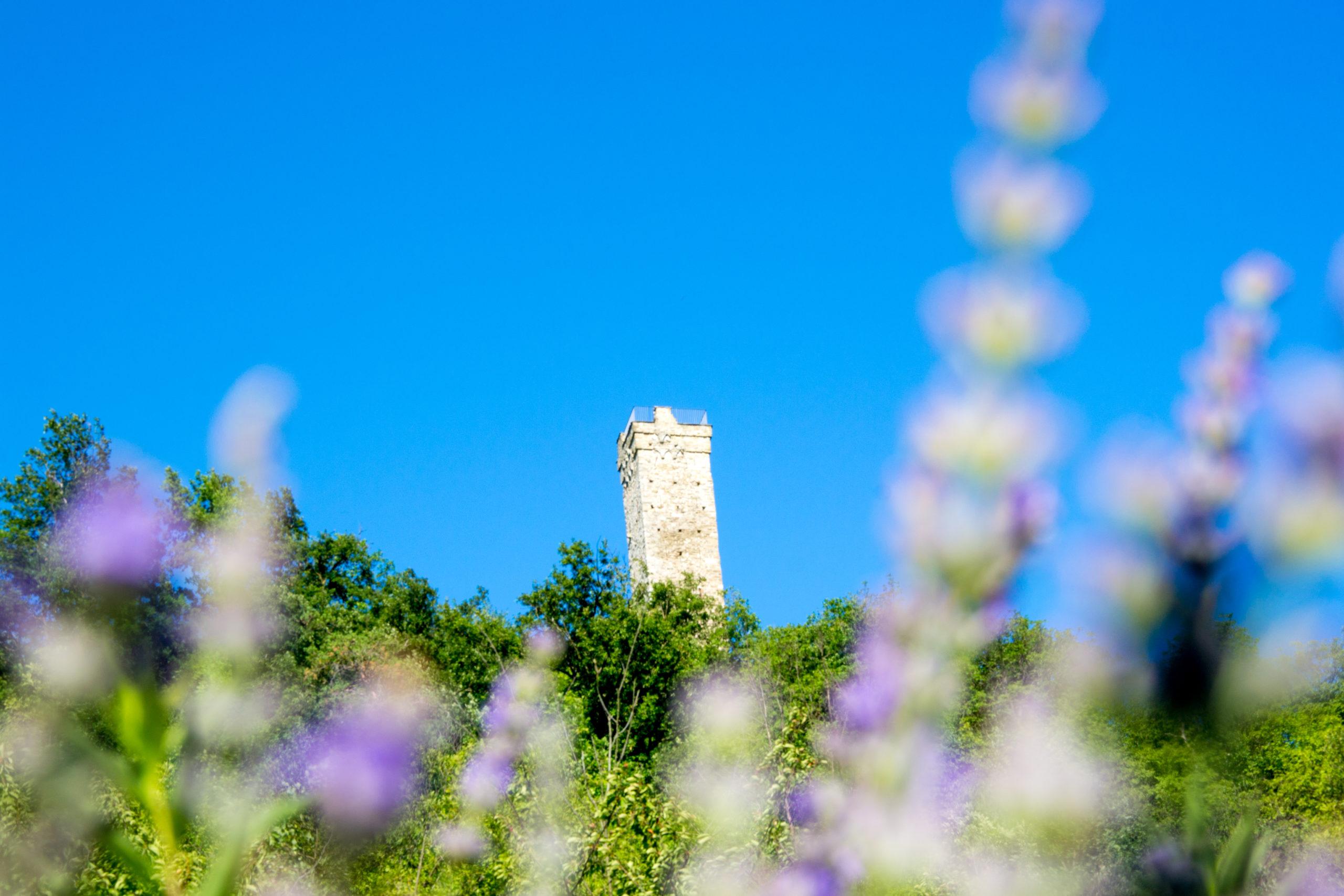 tower merana