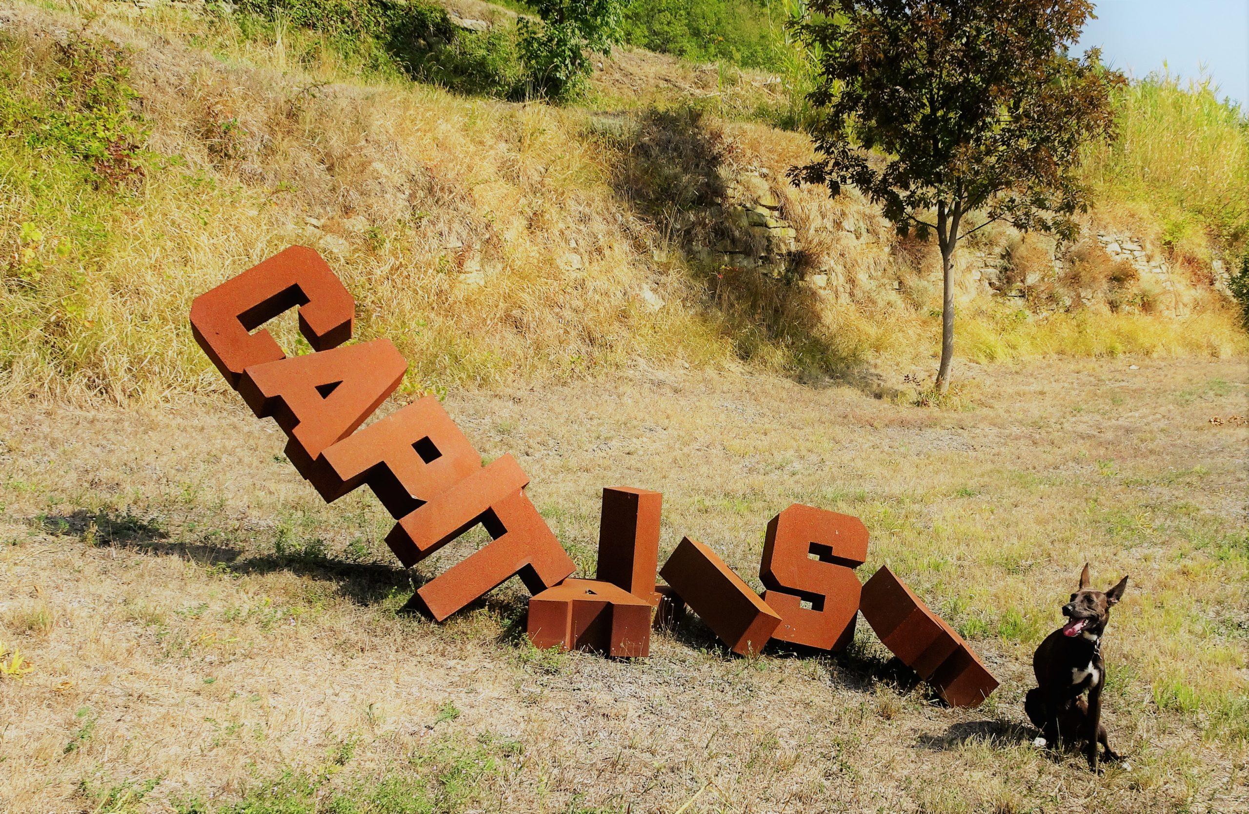 DSC05427-kunstpark-roccaverano-1