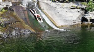 Swimming (and gliding) in the river
