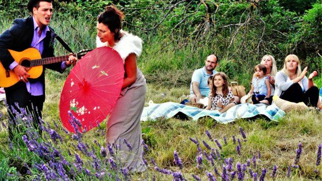 Lavender picnic