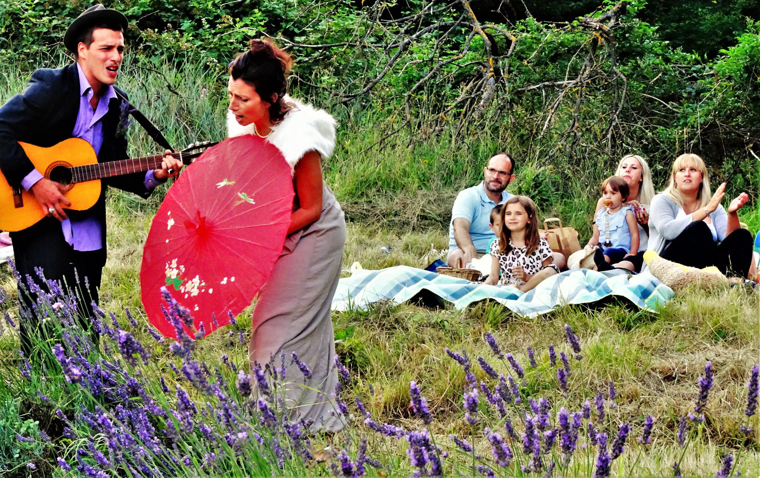 italy lavender picnic