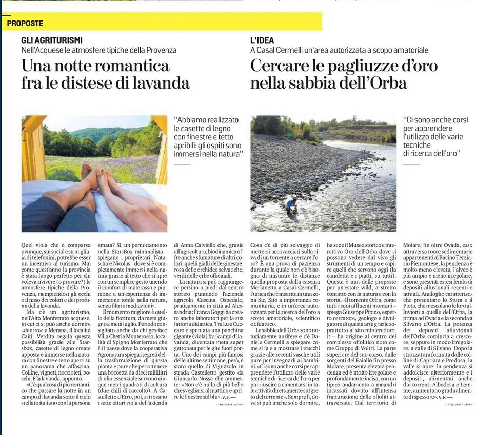 La Stampa Starsbox lavendel artikel1