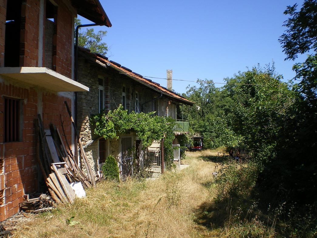 huis-met-druivenrank-en-torentje-op-achtergrond